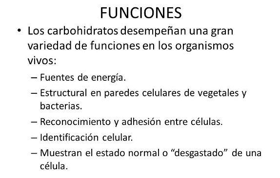 ¿Cuál es la función de los carbohidratos? - Vivir mejor