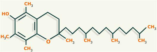 ¿Cuál es el nombre de la vitamina e?