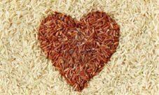 ¿Cuál es mejor: El arroz rojo o el arroz integral?