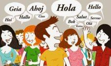 Definición de diversidad cultural