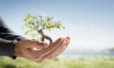 30 formas de detener el calentamiento global