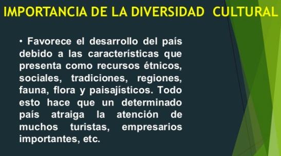 ¿Cuál es la importancia de la diversidad cultural?